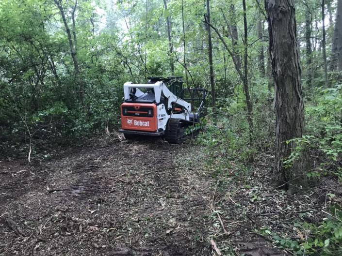 Our bobcat can plow away any obstructions like trees, branches and more.